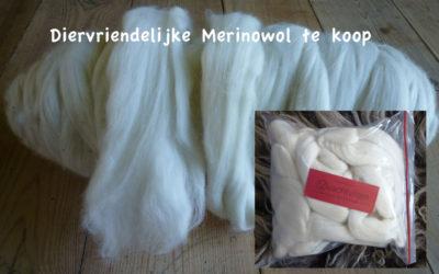 Ecologische Merinowol te koop
