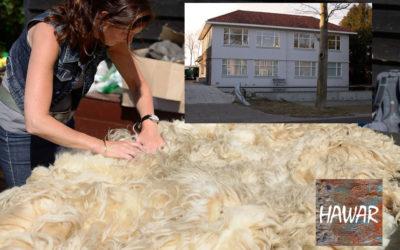 Vilt je eigen vloerkleed uit een ruwe schapenvacht